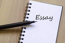 How can Essay Writing Services Boost Remote Studying?